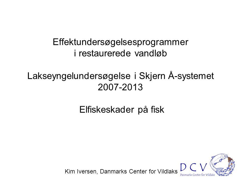 Kim Iversen, Danmarks Center for Vildlaks