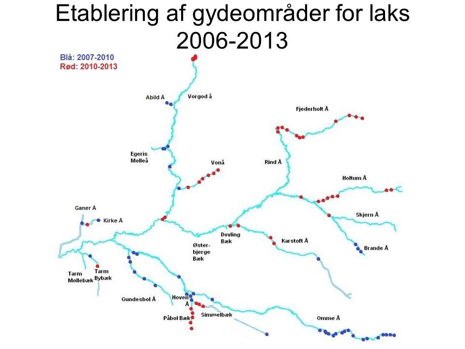 Etablering af gydeområder for laks 2006-2013