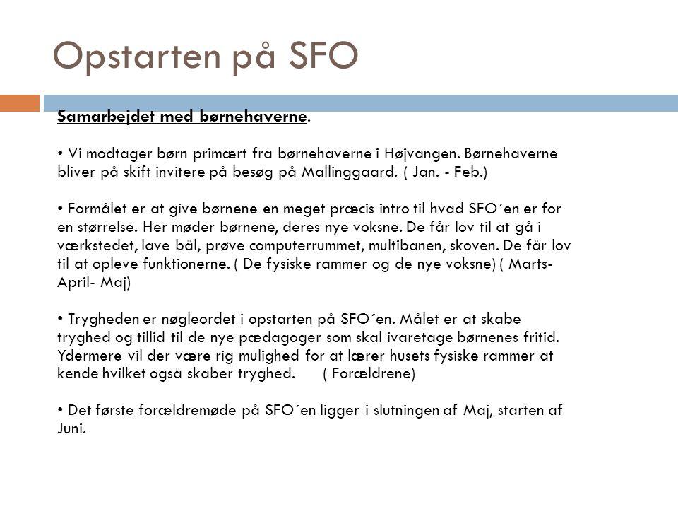 Opstarten på SFO Samarbejdet med børnehaverne.