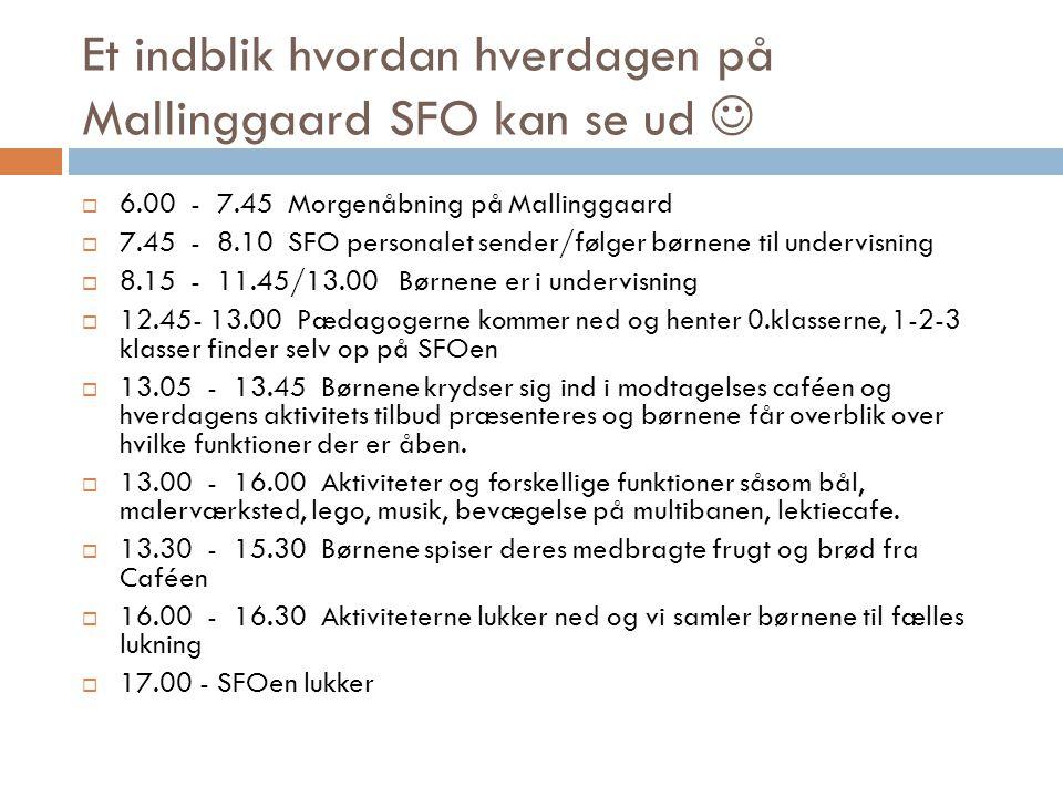 Et indblik hvordan hverdagen på Mallinggaard SFO kan se ud 