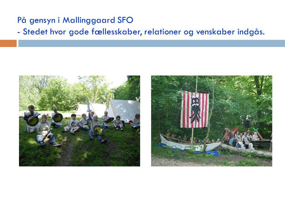 På gensyn i Mallinggaard SFO - Stedet hvor gode fællesskaber, relationer og venskaber indgås.