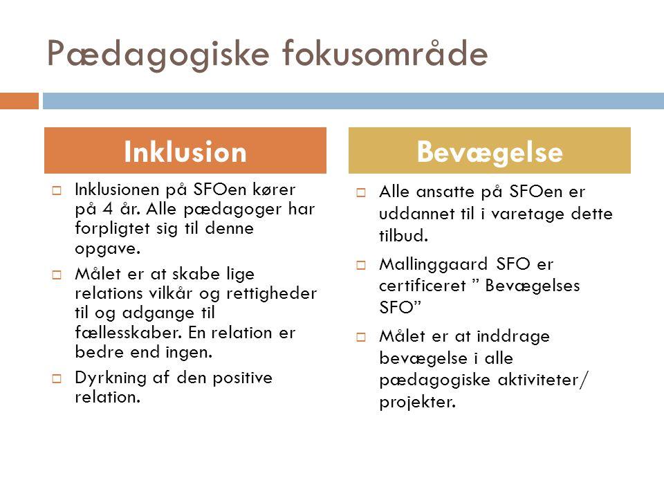Pædagogiske fokusområde