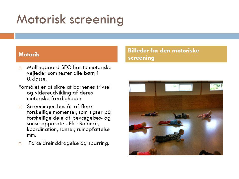 Motorisk screening Billeder fra den motoriske screening Motorik