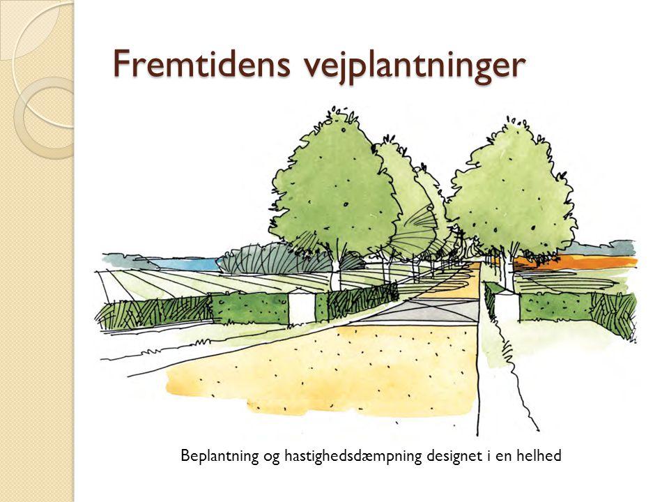 Fremtidens vejplantninger