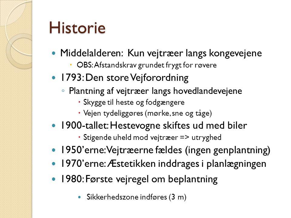 Historie Middelalderen: Kun vejtræer langs kongevejene