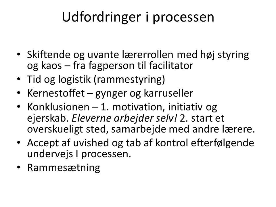 Udfordringer i processen
