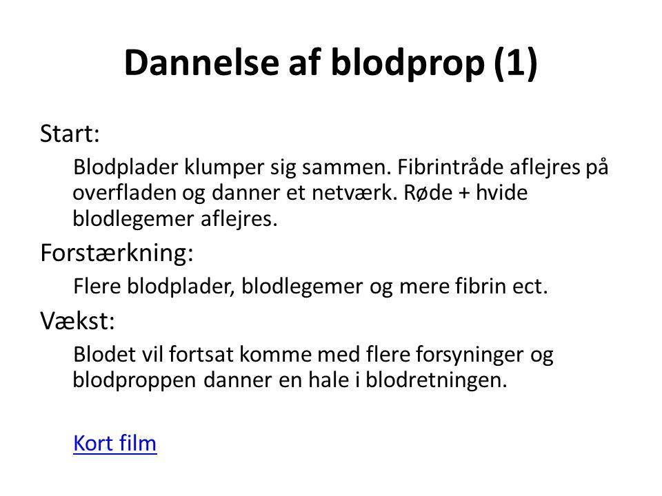 Dannelse af blodprop (1)