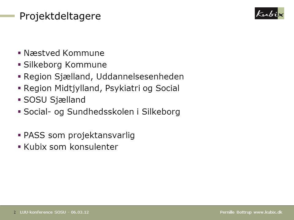 Projektdeltagere Næstved Kommune Silkeborg Kommune