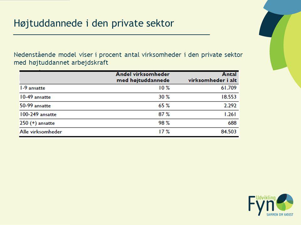 Højtuddannede i den private sektor