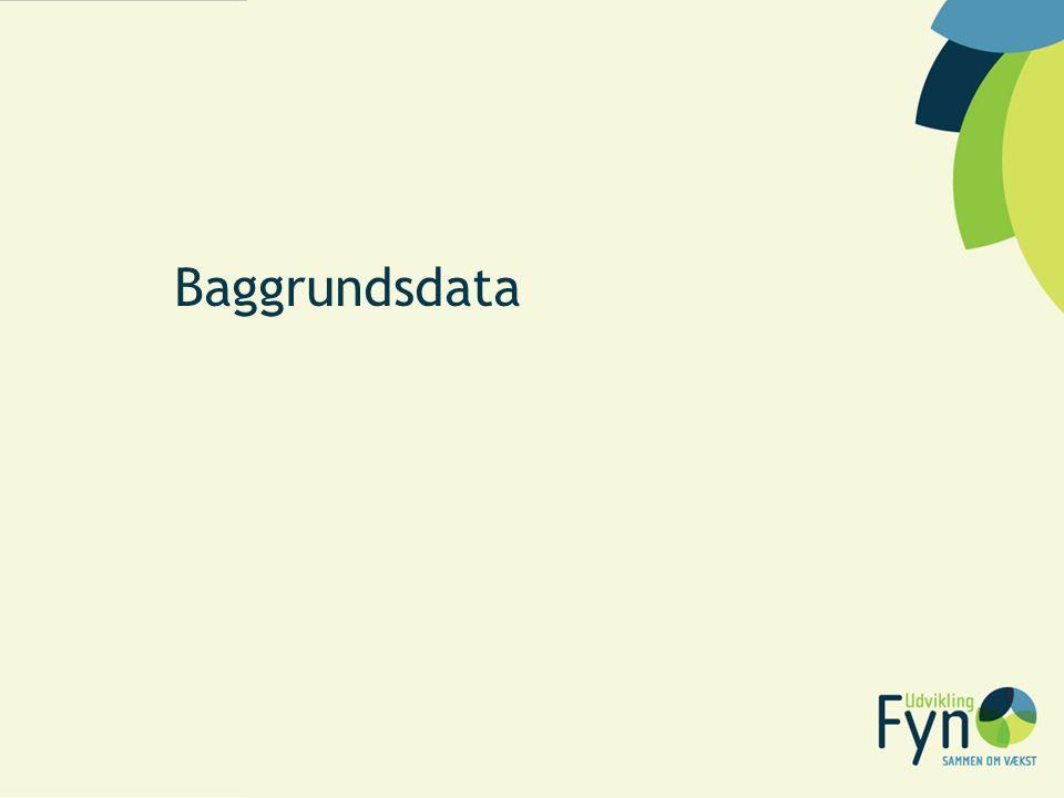 Baggrundsdata