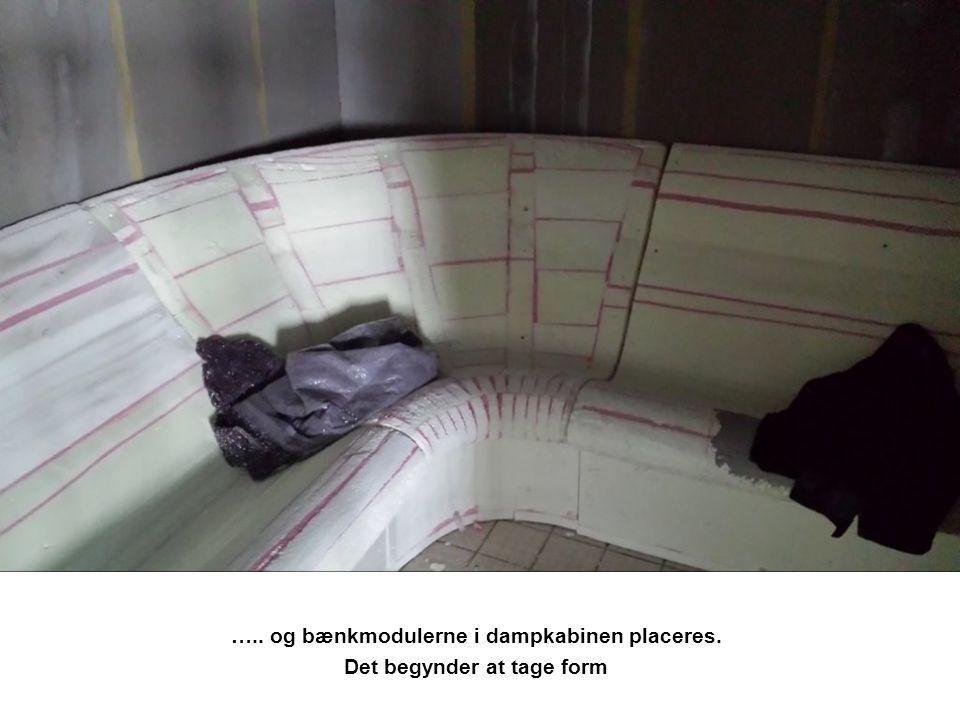 ….. og bænkmodulerne i dampkabinen placeres. Det begynder at tage form