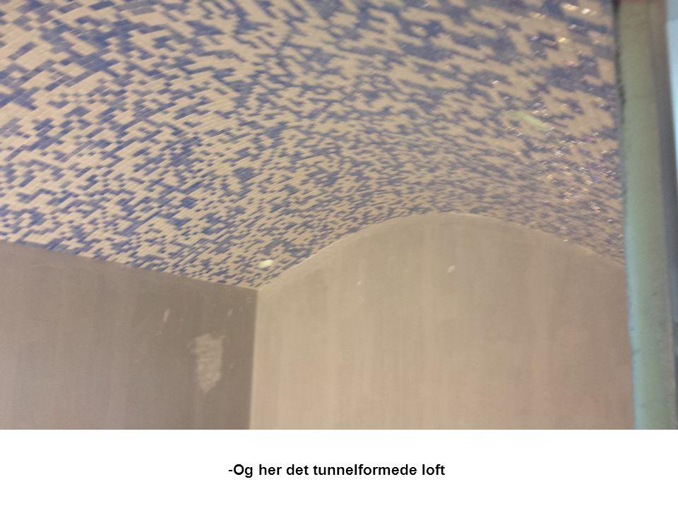 Og her det tunnelformede loft