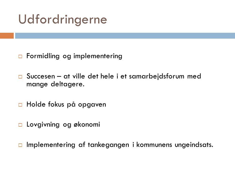Udfordringerne Formidling og implementering