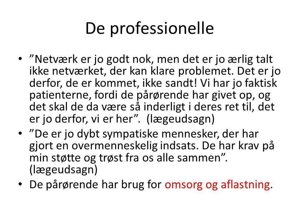 De professionelle