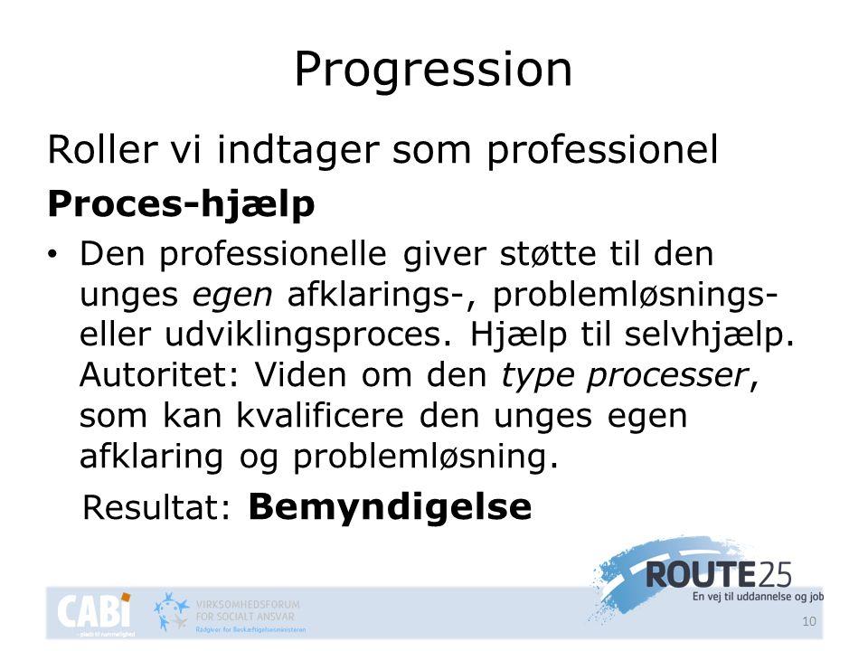 Progression Roller vi indtager som professionel Proces-hjælp
