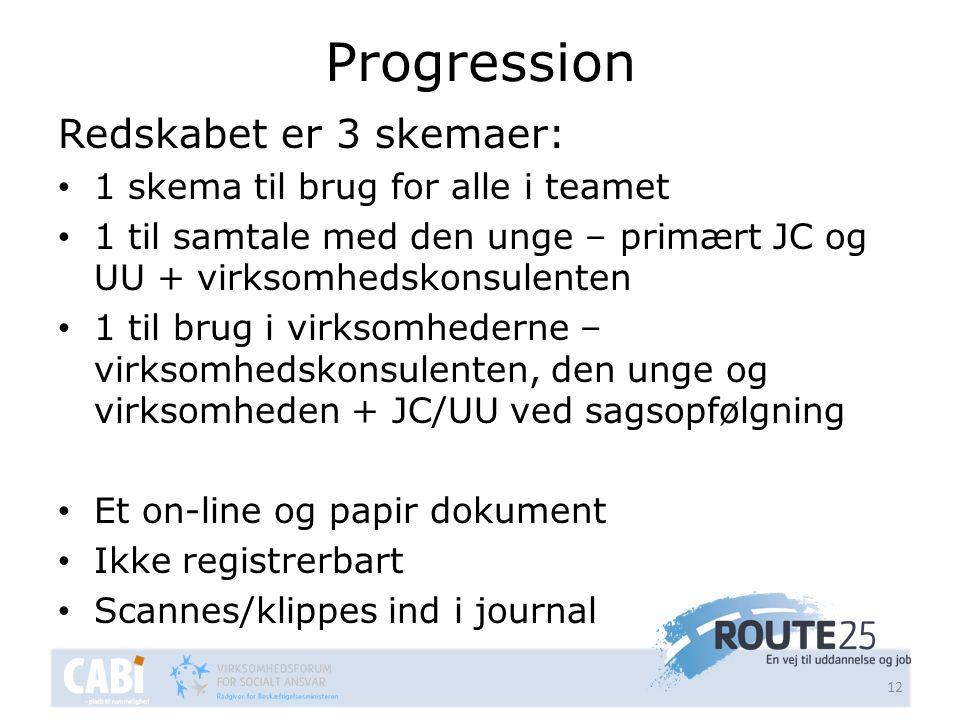 Progression Redskabet er 3 skemaer: 1 skema til brug for alle i teamet