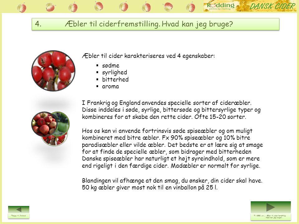 4. Æbler til ciderfremstilling. Hvad kan jeg bruge