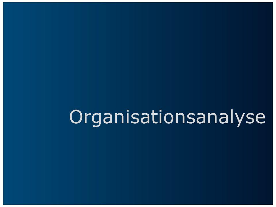 Organisationsanalyse