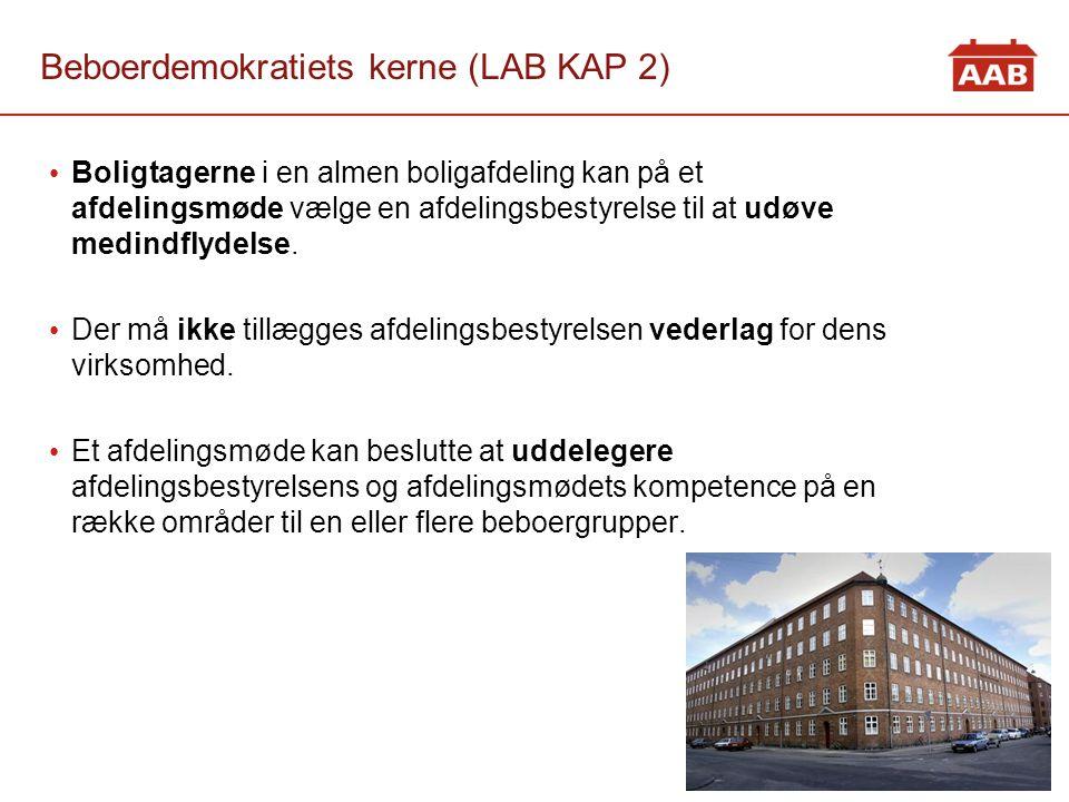 Beboerdemokratiets kerne (LAB KAP 2)