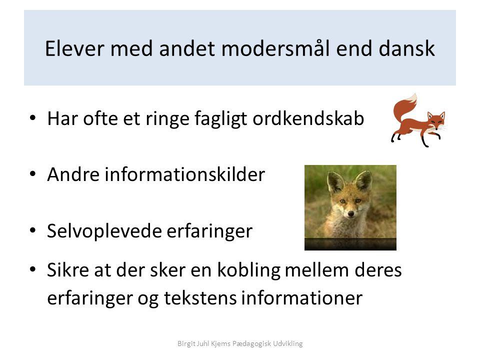 Elever med andet modersmål end dansk