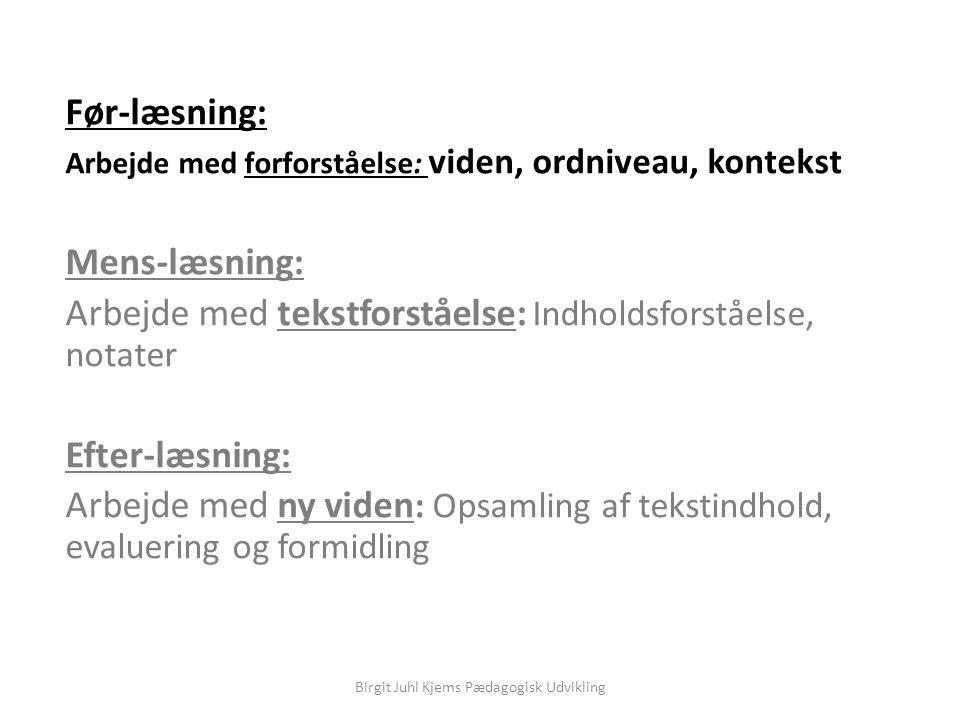Birgit Juhl Kjems Pædagogisk Udvikling
