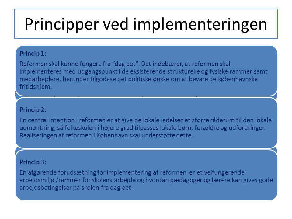 Principper ved implementeringen