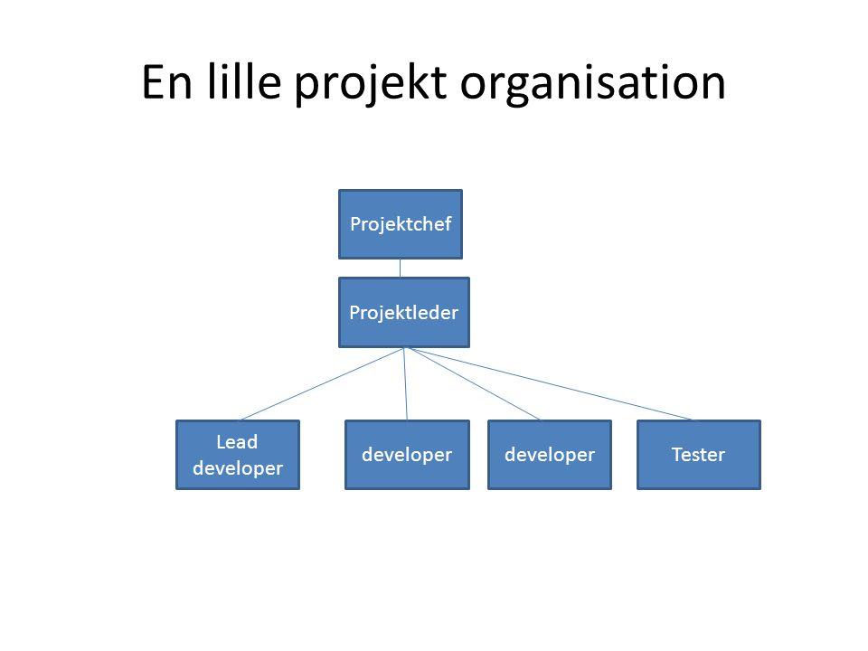 En lille projekt organisation