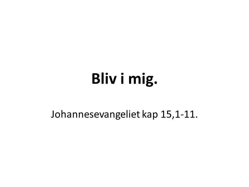 Johannesevangeliet kap 15,1-11.