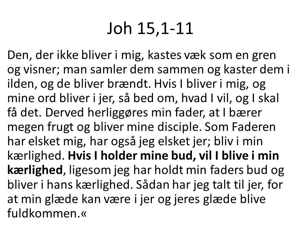 Joh 15,1-11