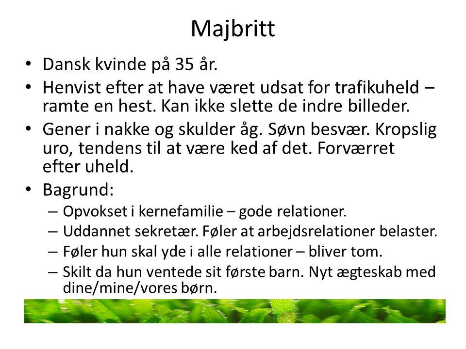 Majbritt Dansk kvinde på 35 år.