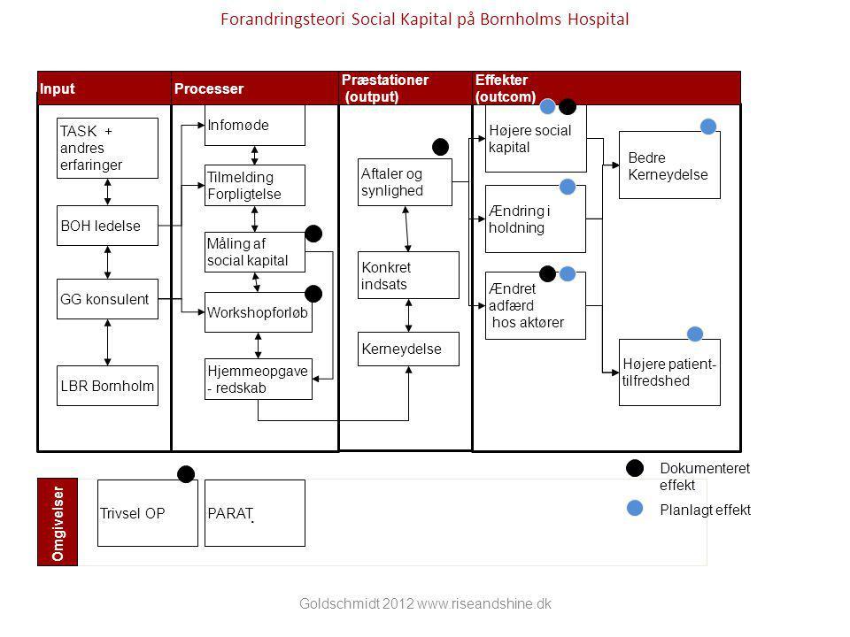 Forandringsteori Social Kapital på Bornholms Hospital