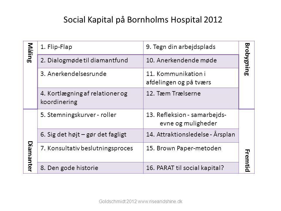 Social Kapital på Bornholms Hospital 2012