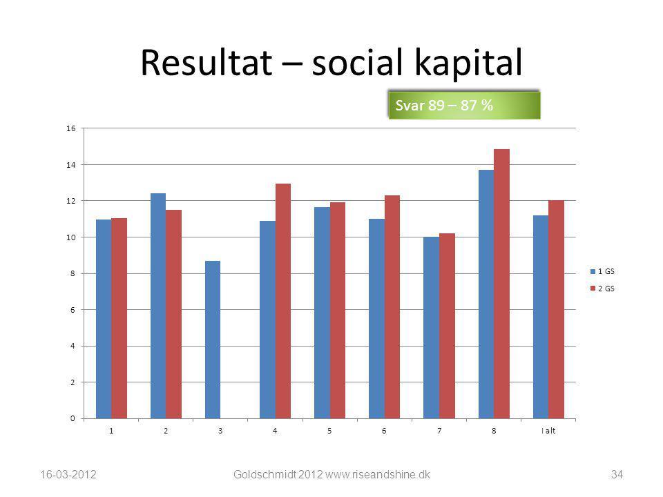 Resultat – social kapital