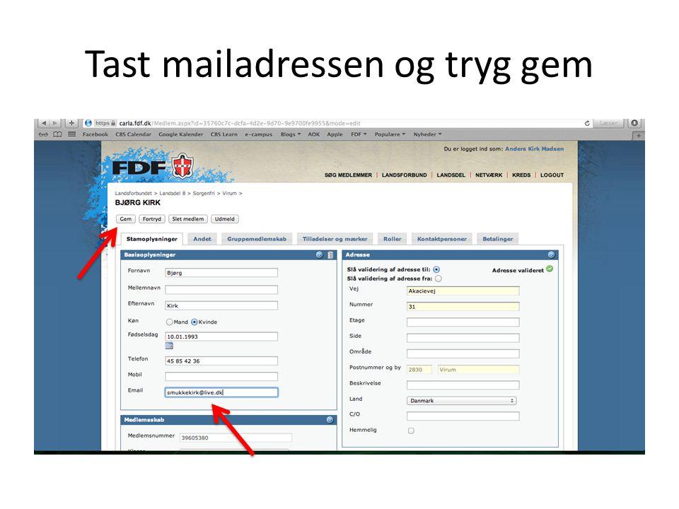 Tast mailadressen og tryg gem