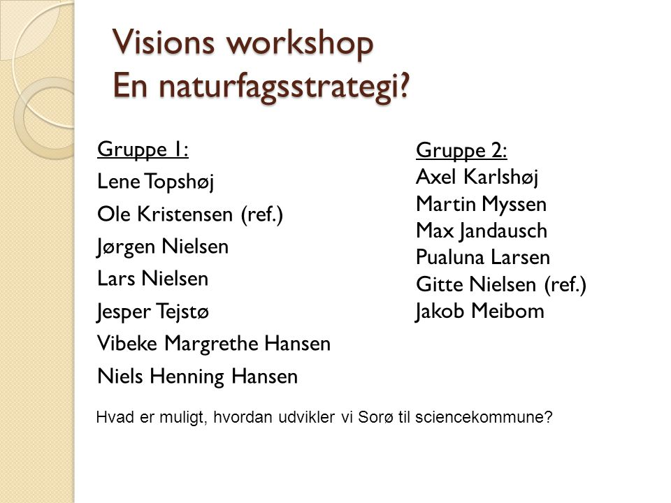 Visions workshop En naturfagsstrategi