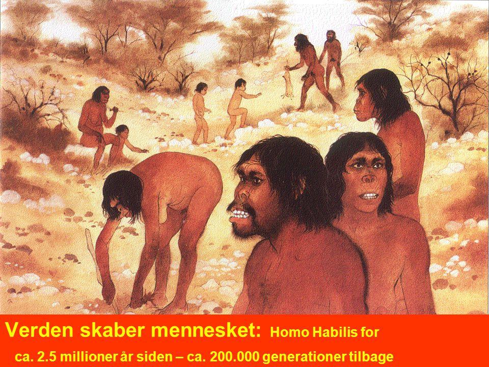 Verden skaber mennesket: Homo Habilis for ca. 2