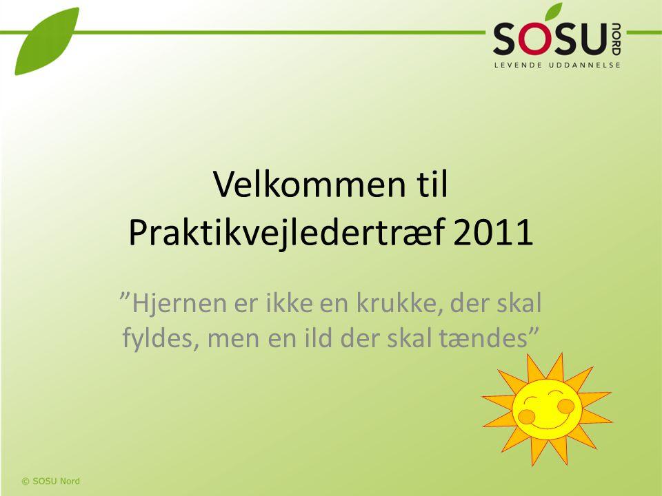 Velkommen til Praktikvejledertræf 2011