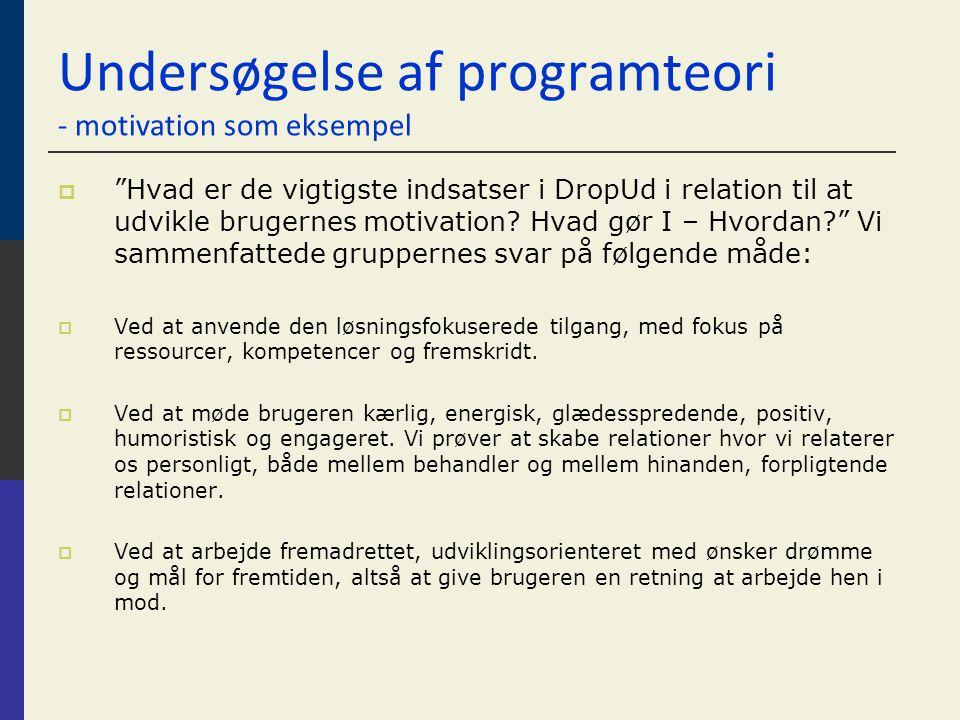 Undersøgelse af programteori - motivation som eksempel