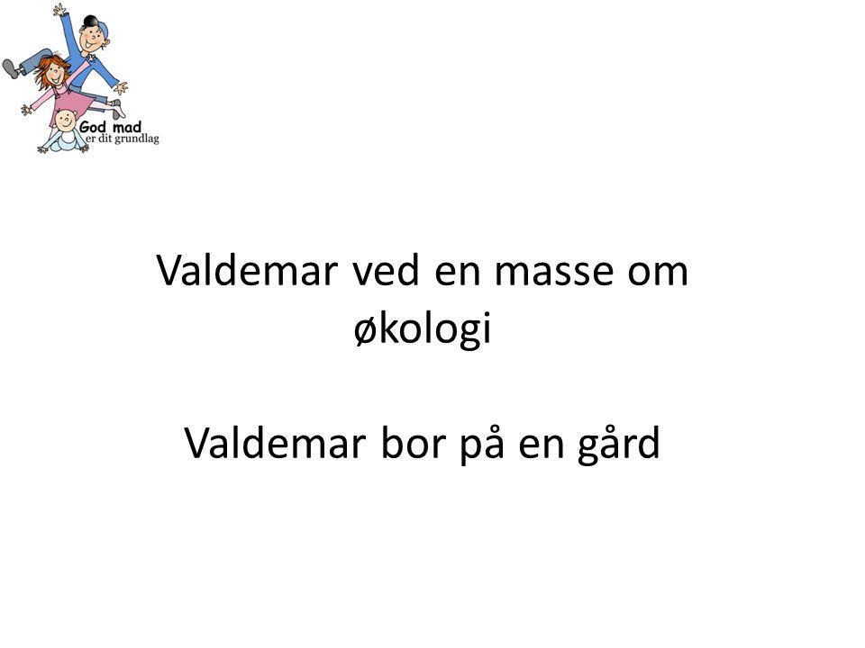 Valdemar ved en masse om økologi