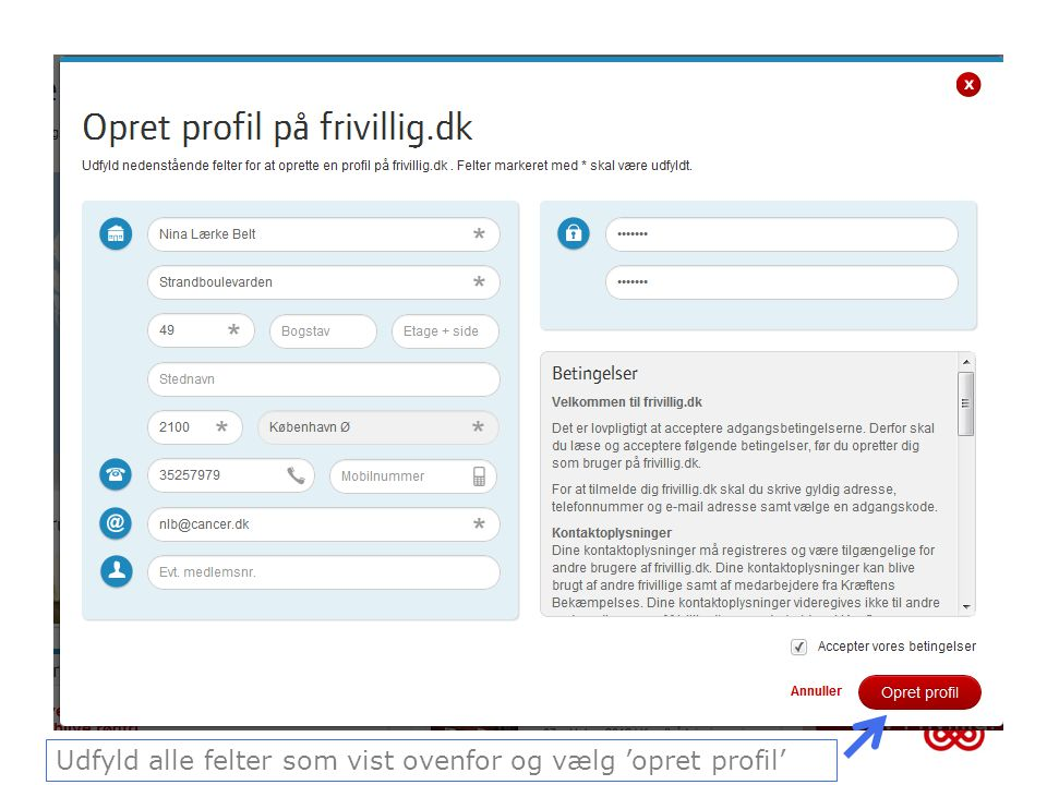 Udfyld alle felter som vist ovenfor og vælg 'opret profil'