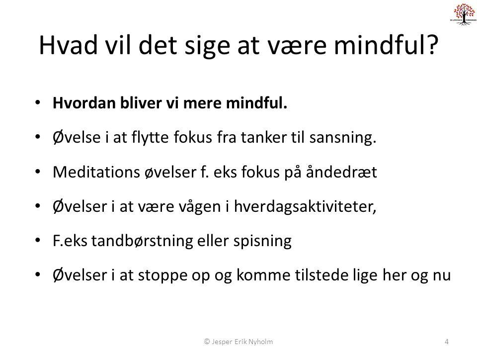 Hvad vil det sige at være mindful