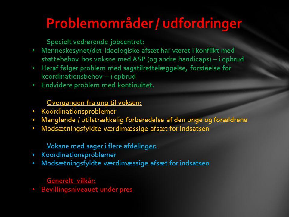 Problemområder / udfordringer