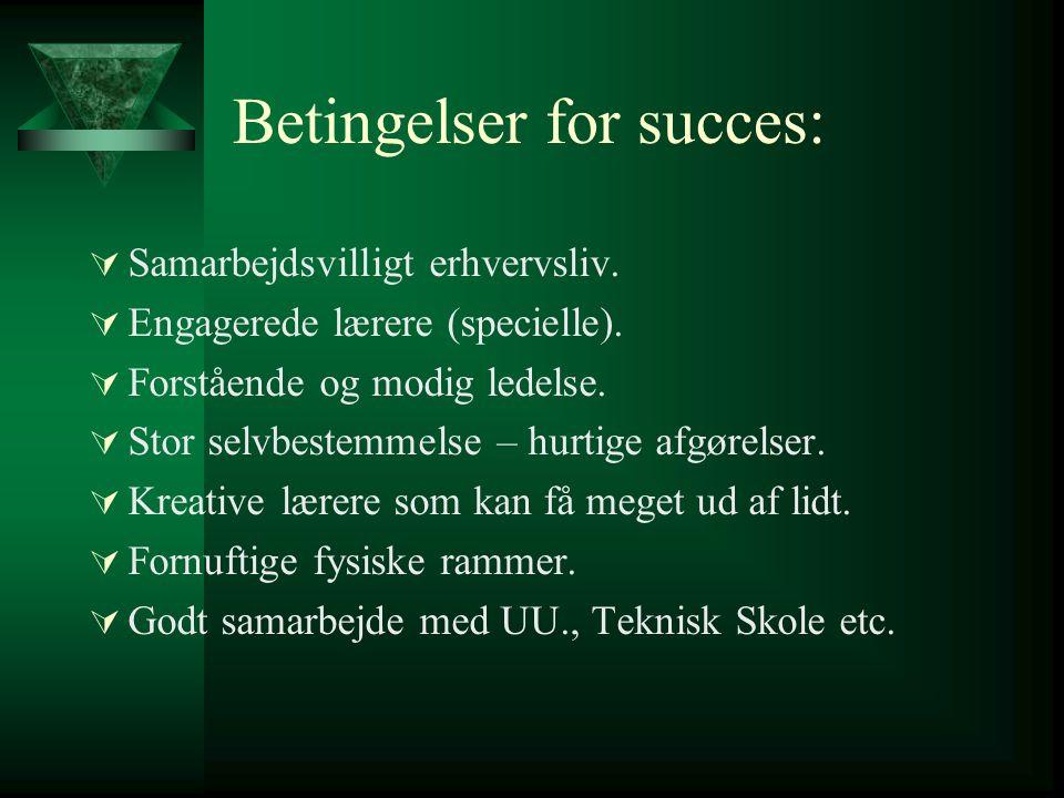 Betingelser for succes: