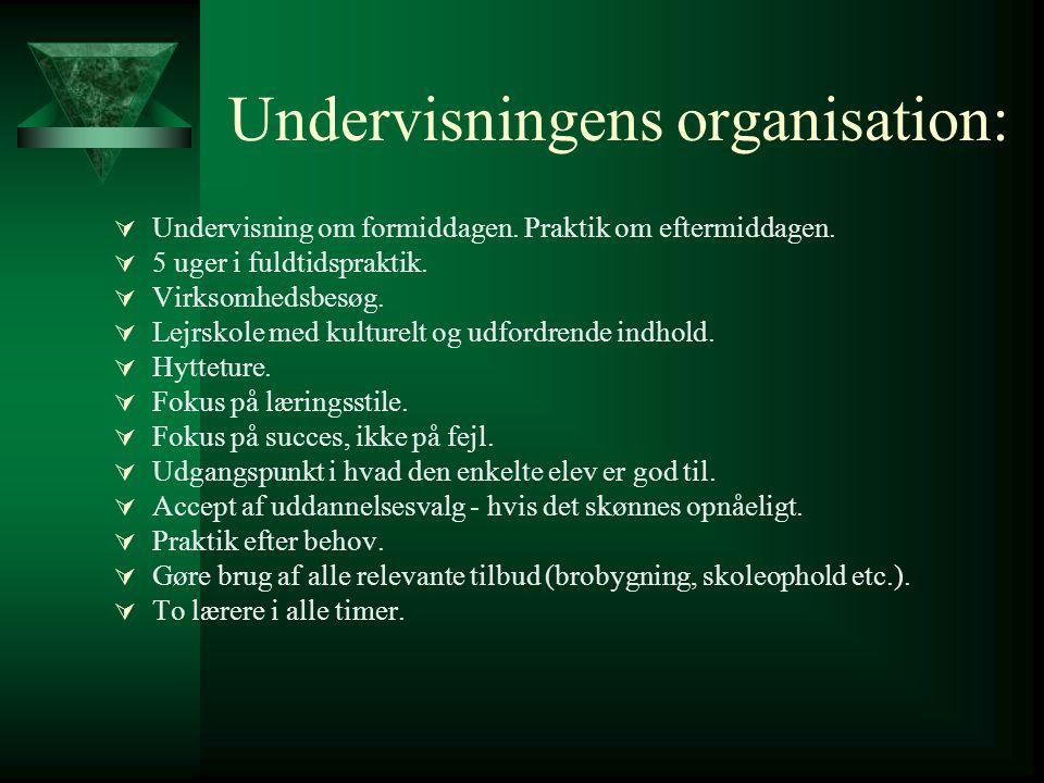 Undervisningens organisation:
