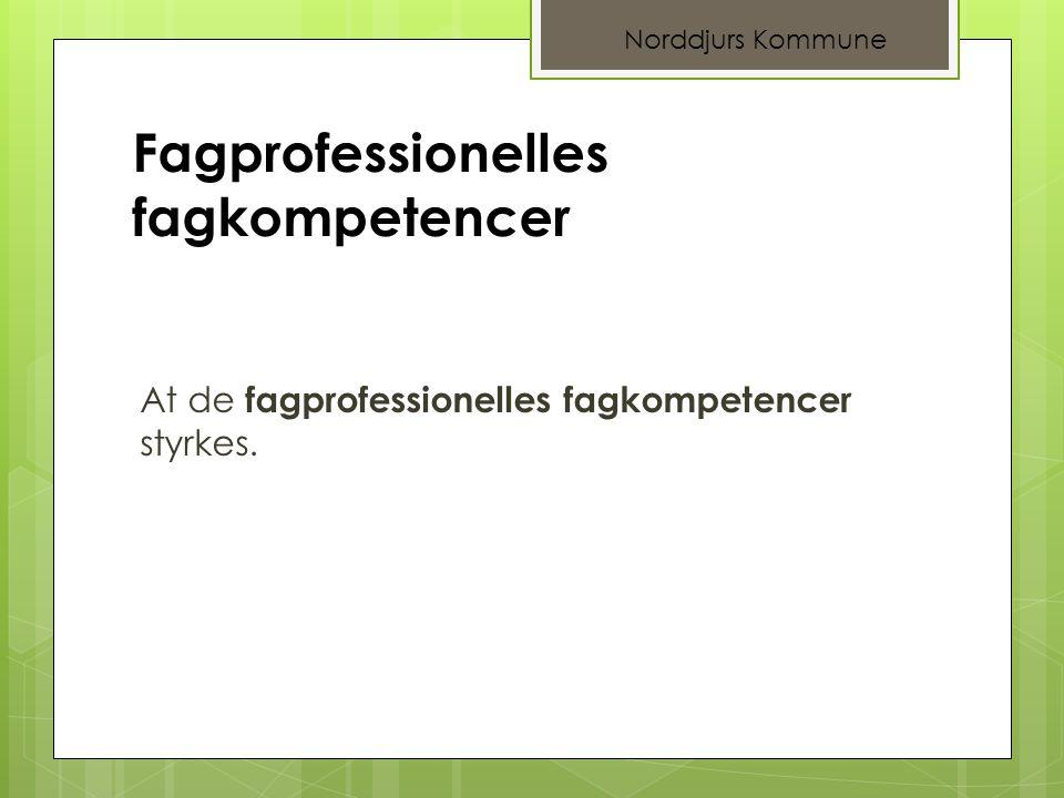 Fagprofessionelles fagkompetencer