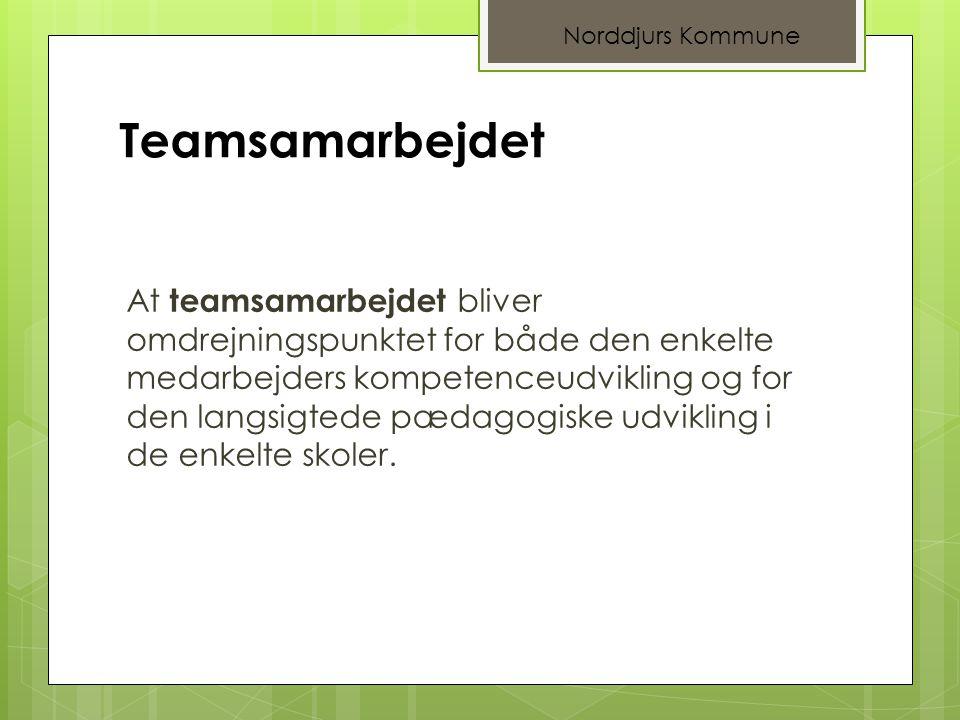 Norddjurs Kommune Teamsamarbejdet.