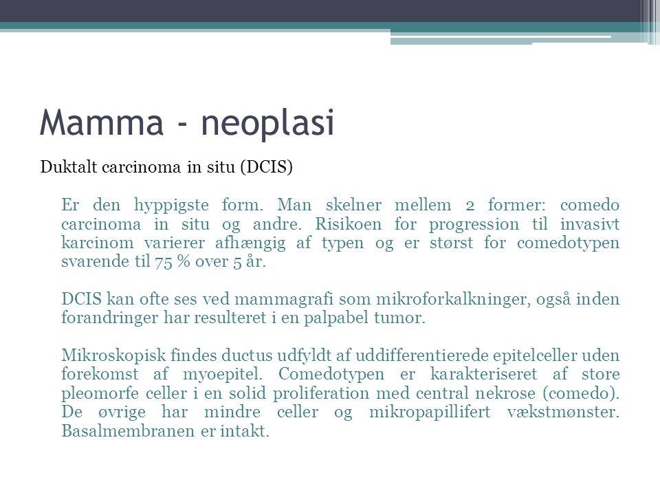 Mamma - neoplasi