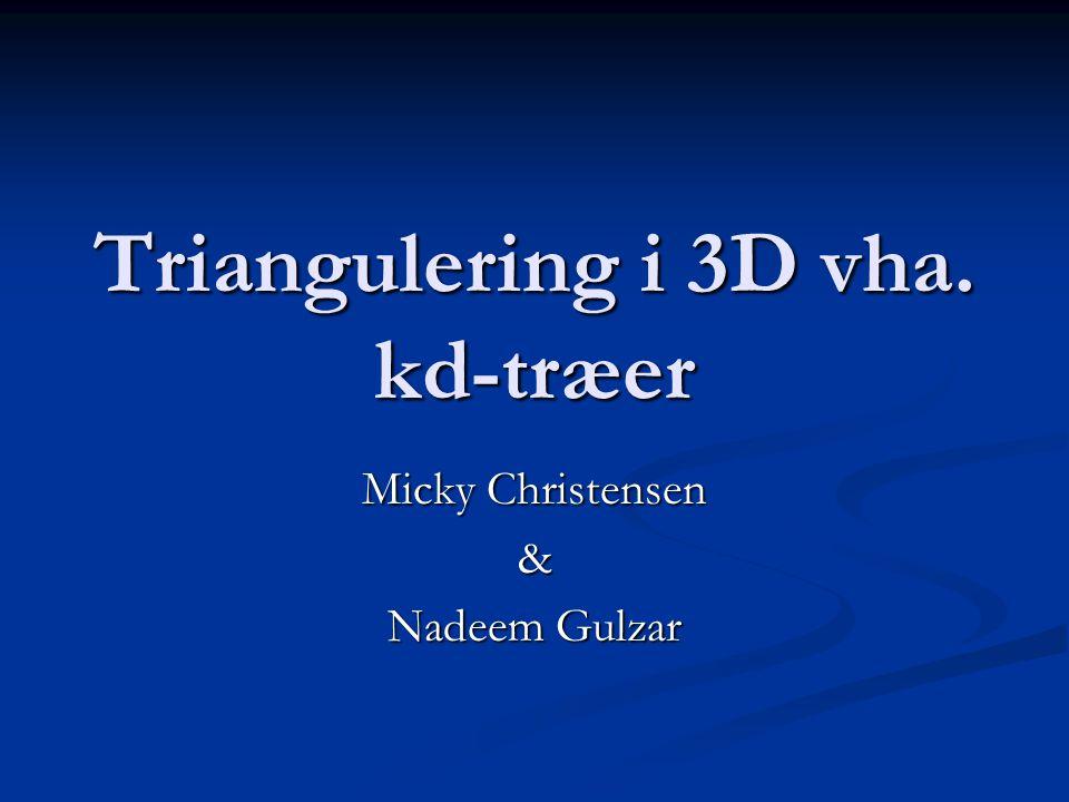 Triangulering i 3D vha. kd-træer