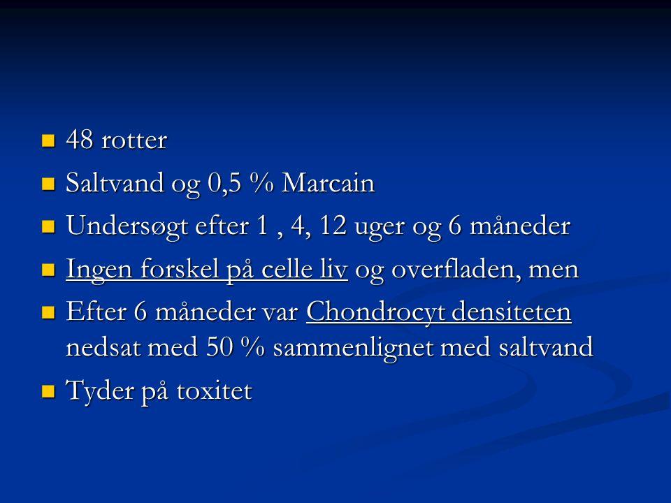 48 rotter Saltvand og 0,5 % Marcain. Undersøgt efter 1 , 4, 12 uger og 6 måneder. Ingen forskel på celle liv og overfladen, men.