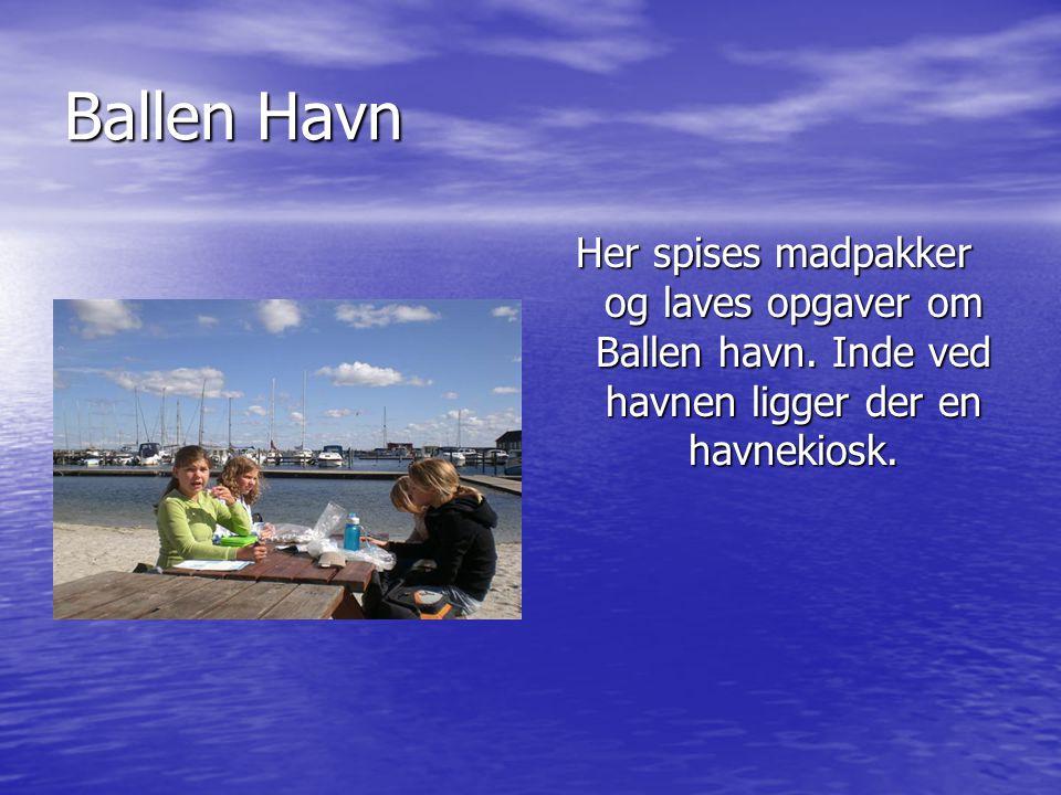 Ballen Havn Her spises madpakker og laves opgaver om Ballen havn.